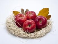 [몸에 좋은 음식] 사과 이야기 ☞ 자세히 보기
